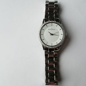Skagen stainless steel watch